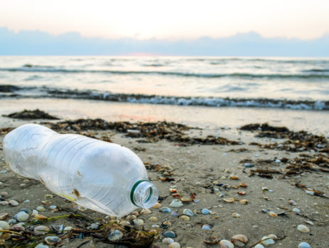 protection-des-oceans-:-creation-du-label-«-ocean-approved-»-!